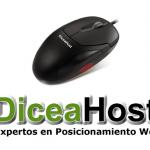 DiceaHost